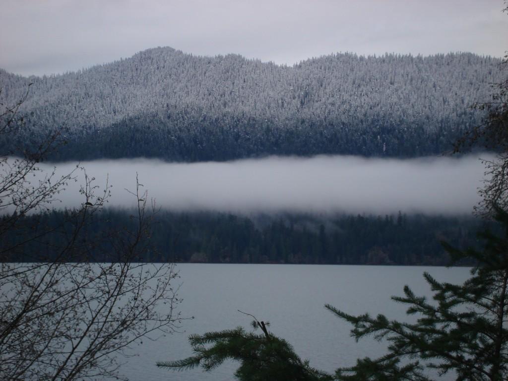 View of the Lake, Nov. 2010